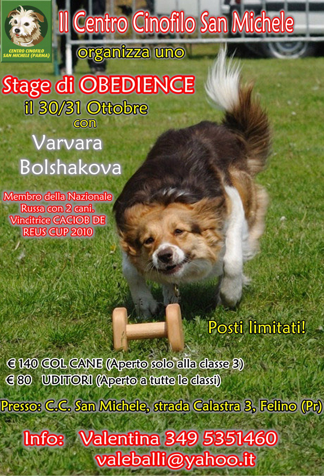 Kaisa Russian National Dog Obedience Team Member